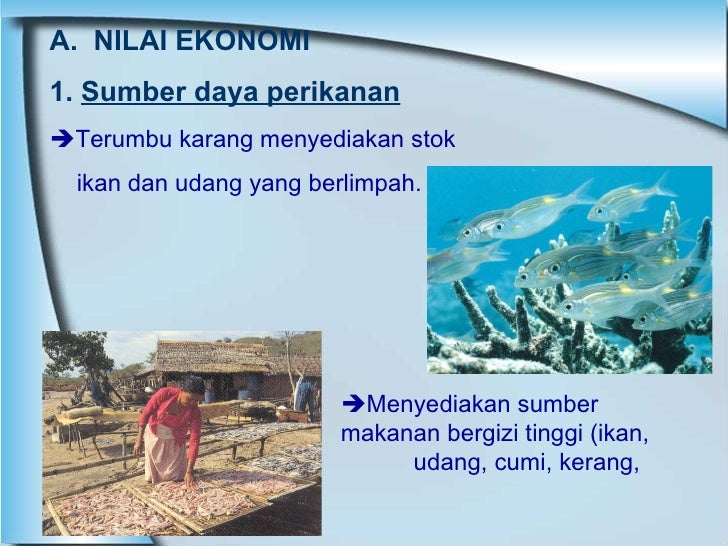 A.  NILAI EKONOMI 1.  Sumber daya perikanan  Terumbu karang menyediakan stok  ikan dan udang yang berlimpah.   Menyediak...