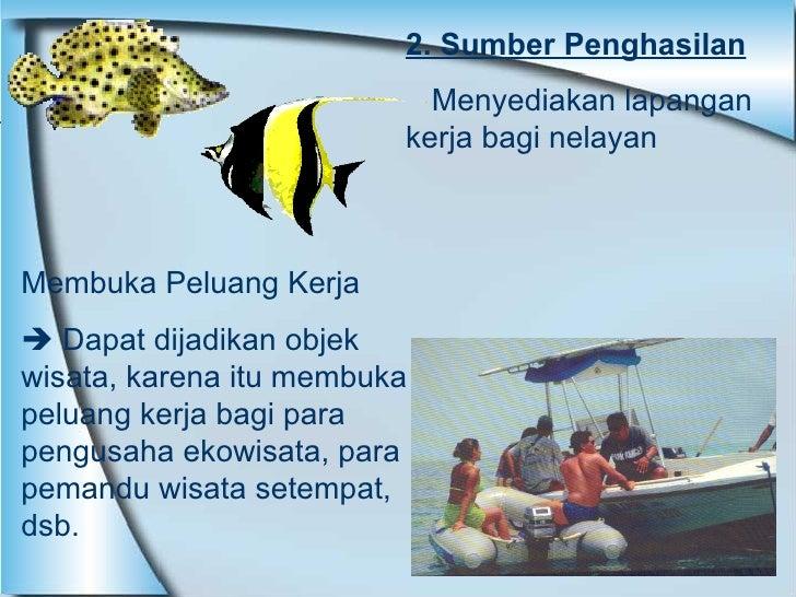 2. Sumber Penghasilan Menyediakan lapangan kerja bagi nelayan  Membuka Peluang Kerja    Dapat dijadikan objek wisata, kar...