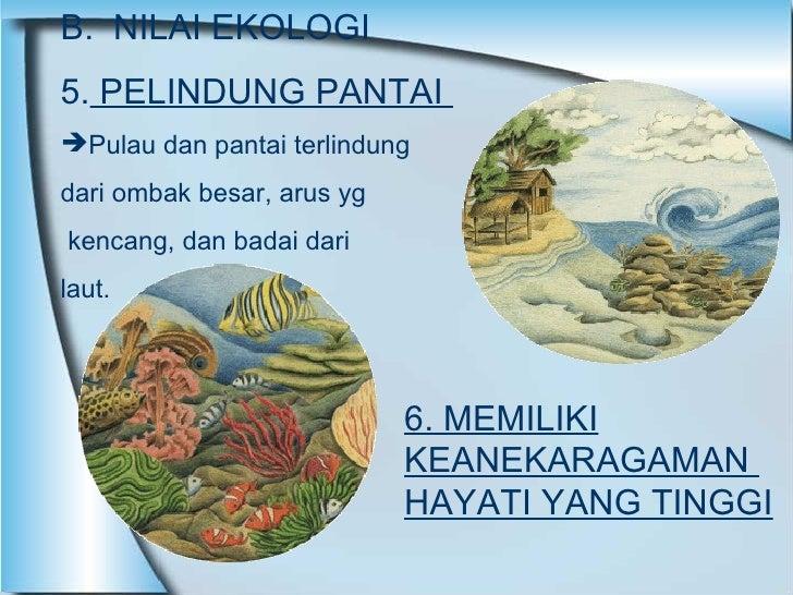 <ul><li>B.  NILAI EKOLOGI </li></ul><ul><li>5.  PELINDUNG PANTAI  </li></ul><ul><li>Pulau dan pantai terlindung  </li></ul...