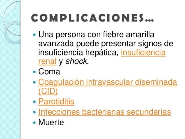 signos y sintomas de fiebre amarilla