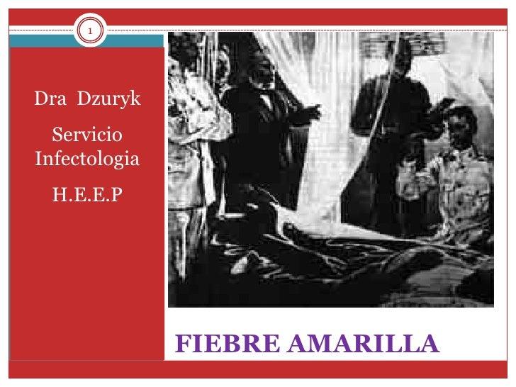 1<br />FIEBRE AMARILLA<br />Dra  Dzuryk<br />Servicio Infectologia <br />H.E.E.P<br />