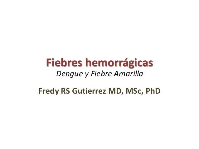 Fiebres hemorrágicas Fredy RS Gutierrez MD, MSc, PhD Dengue y Fiebre Amarilla