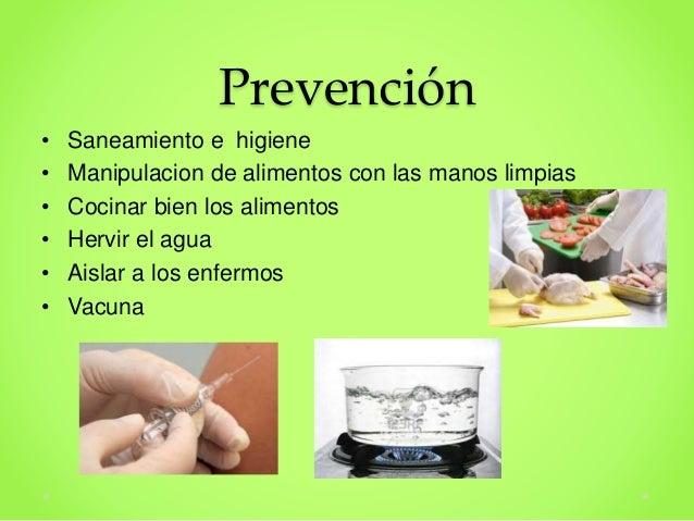Resultado de imagen para fiebre tifoidea prevencion