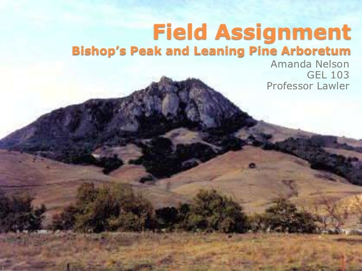 Field AssignmentBishop's Peak and Leaning Pine Arboretum <br />Amanda Nelson<br />GEL 103<br />Professor Lawler<br />