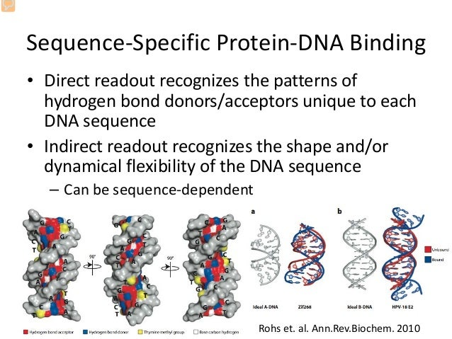 can field based chemistry help us to predict protein dna binding site can field based chemistry help us to predict protein dna binding sites
