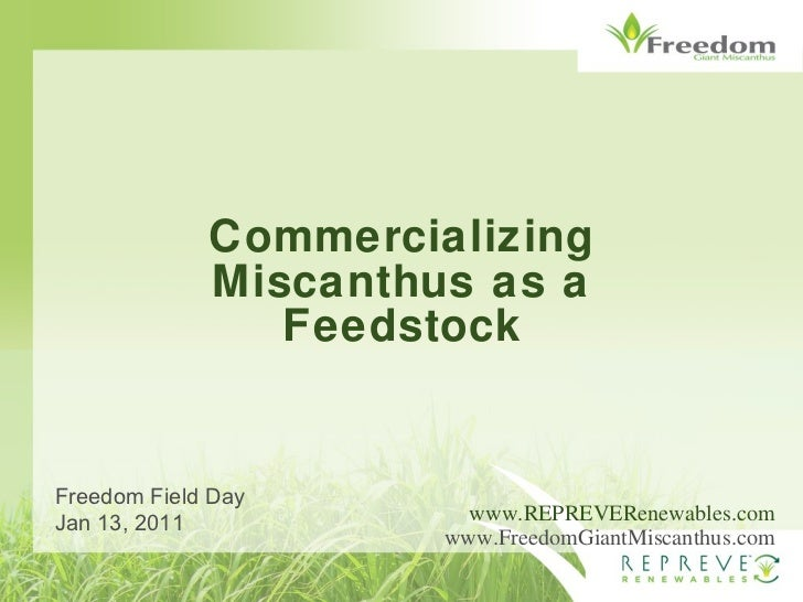 Commercializing Miscanthus as a Feedstock www.REPREVERenewables.com www.FreedomGiantMiscanthus.com Freedom Field Day Jan 1...