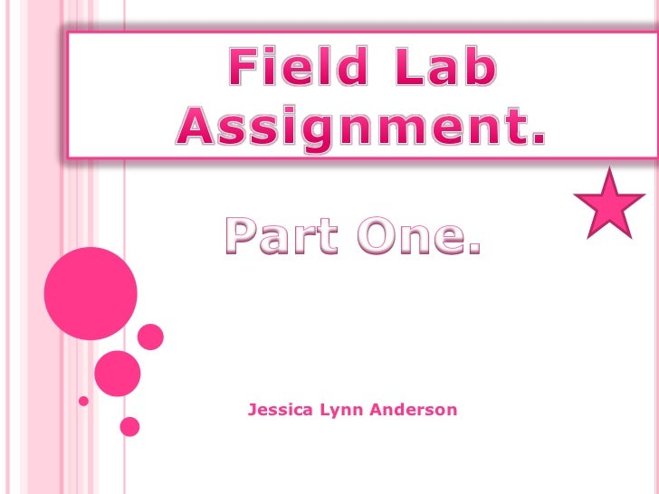 Field Lab Assignment.<br />Part One.<br />Jessica Lynn Anderson<br />