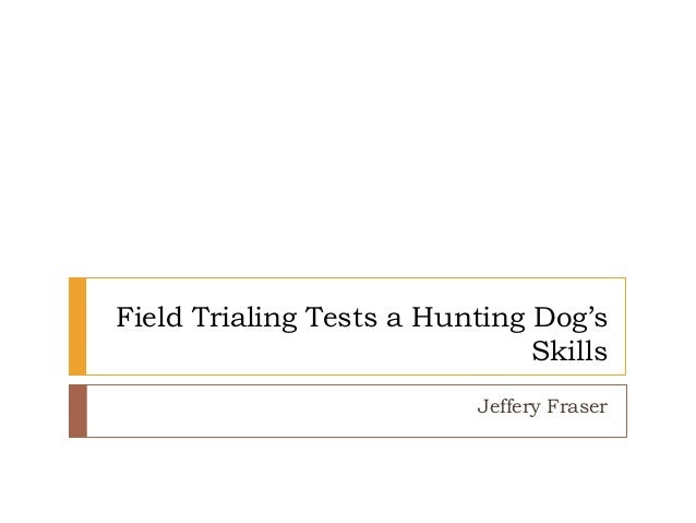 Field Trialing Tests a Hunting Dog's Skills Jeffery Fraser