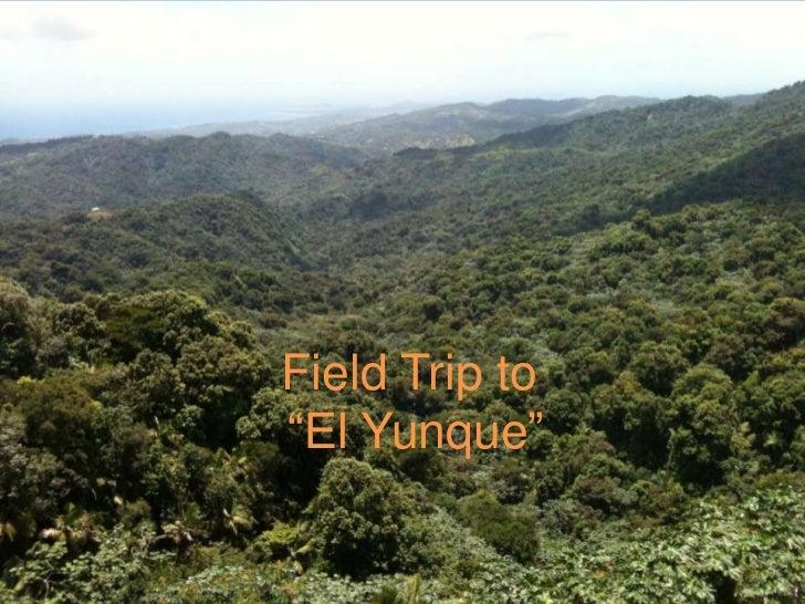 """Field Trip to """"El Yunque""""<br />"""