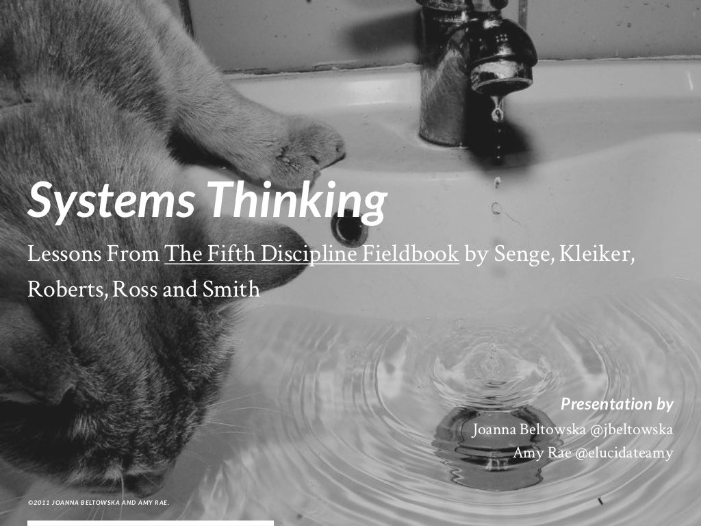 SYSTEMS THINKING: Lessons From The Fifth Discipline Fieldbook by Senge, Kleiker, Roberts, Ross and Smith