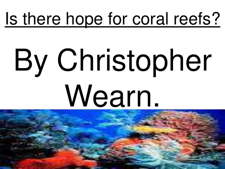 Is there hope for coral reefs? By Christopher    Wearn.