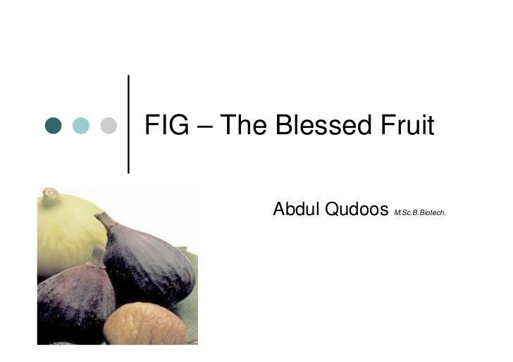 FIG – The Blessed Fruit            Abdul Qudoos   M.Sc.B.Biotech.