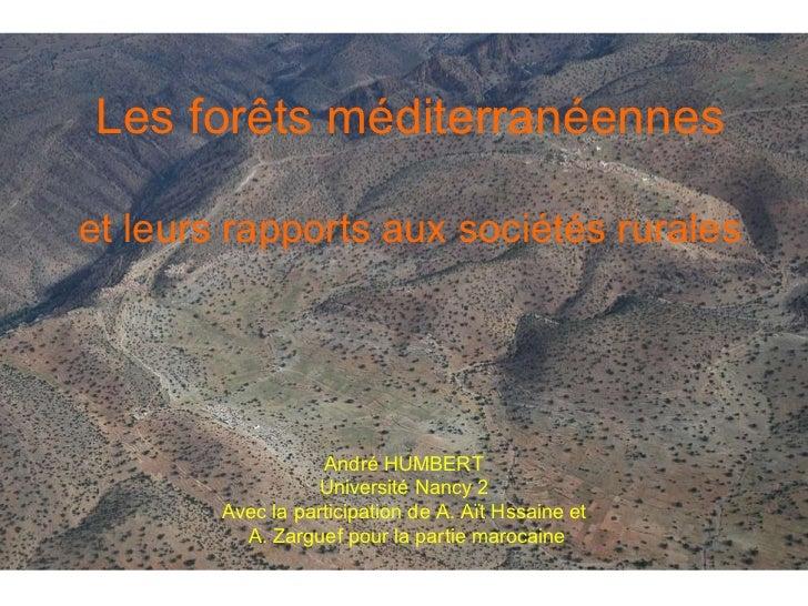 Les forêts méditerranéennes et leurs rapports aux sociétés rurales André HUMBERT Université Nancy 2 Avec la participation ...