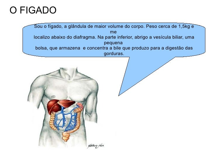 O FIGADO Sou o fígado, a glândula de maior volume do corpo. Peso cerca de 1,5kg e me  localizo abaixo do diafragma. Na par...