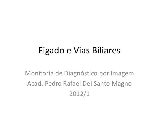 Figado e Vias BiliaresMonitoria de Diagnóstico por ImagemAcad. Pedro Rafael Del Santo Magno              2012/1
