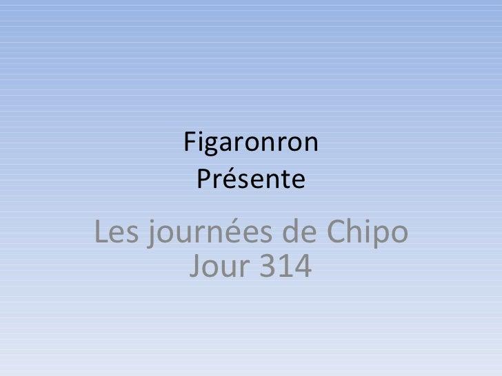 Figaronron      PrésenteLes journées de Chipo       Jour 314