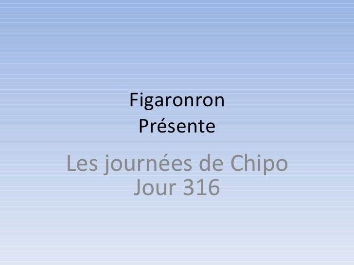 Figaronron      PrésenteLes journées de Chipo       Jour 316