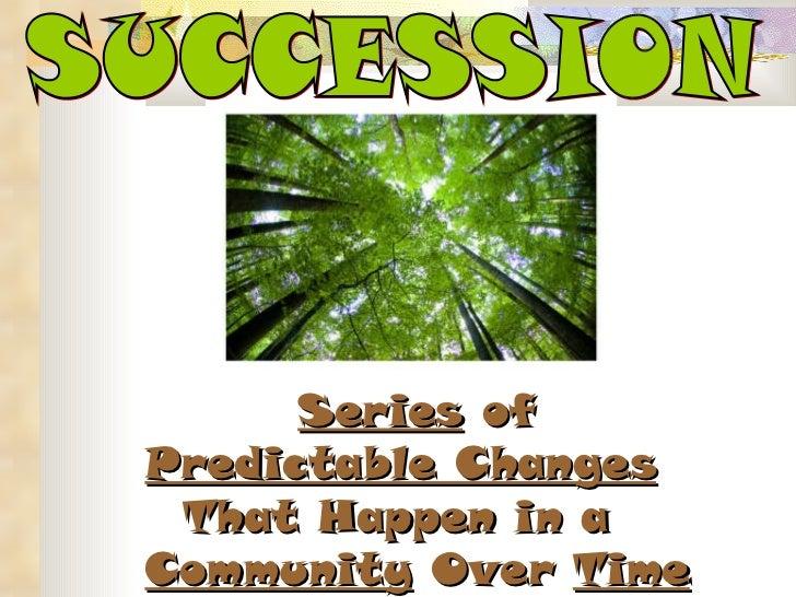 Secondary Succession - Morris, Luke Storyboard