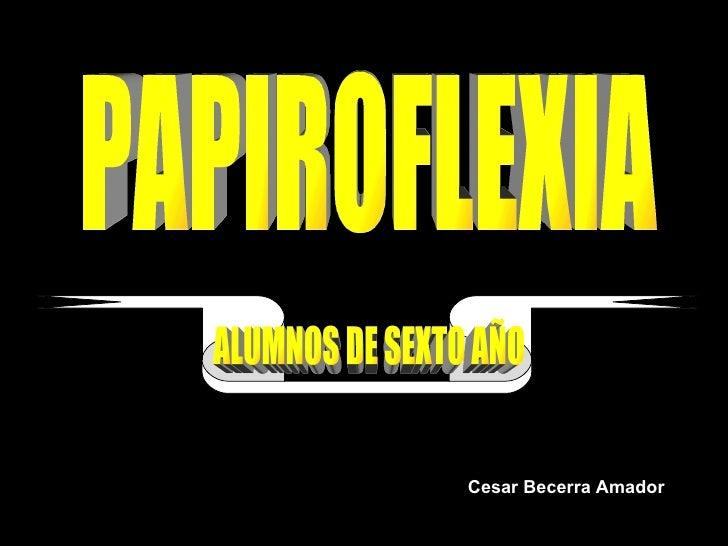 PAPIROFLEXIA ALUMNOS DE SEXTO AÑO Cesar Becerra Amador