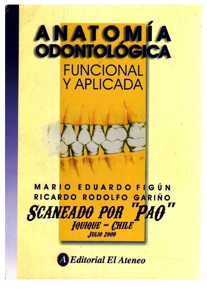 Figun anatomía odontologica funcional y aplicada