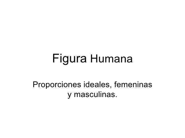 Figura  Humana Proporciones ideales, femeninas y masculinas.