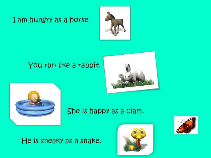 I am hungry as a horse .    You run like a rabbit.  He is sneaky as a snake.  She is happy as a clam.     ...