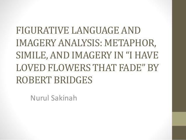 the flowers analysis