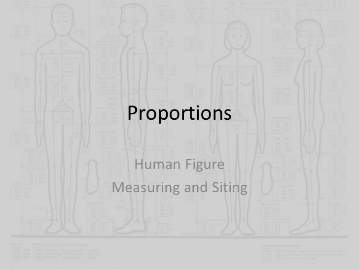 Proportions  Human FigureMeasuring and Siting