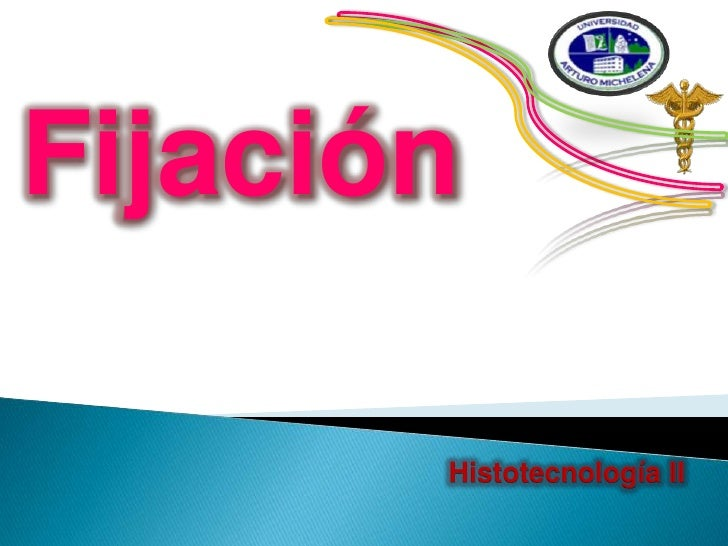 Fijación<br />Histotecnología II<br />