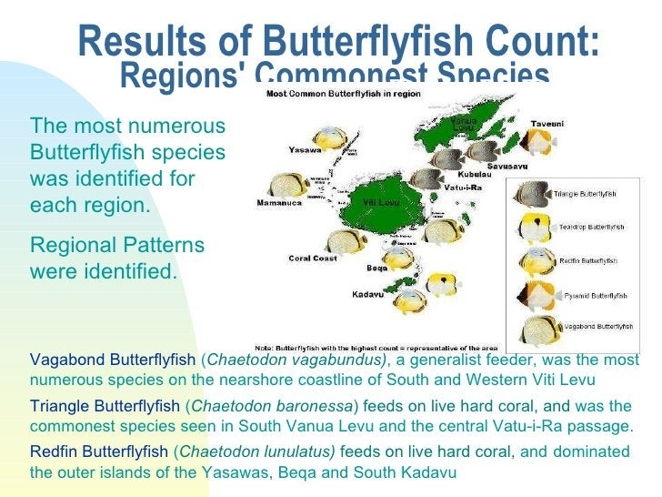 Results of Butterflyfish Count: Regions' Commonest Species  The most numerous Butterflyfish species was identified for eac...