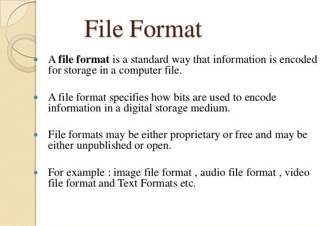 File formats and its types Slide 2