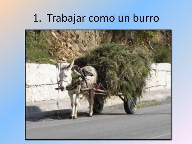 1. Trabajar como un burro
