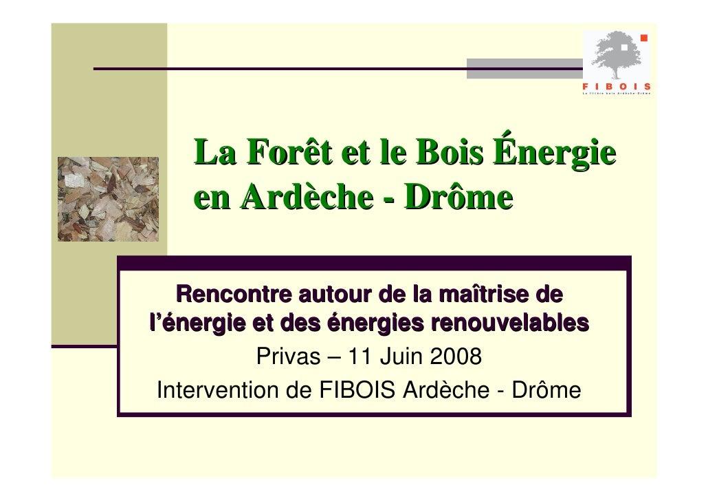 La Forêt et le Bois Énergie    en Ardèche - Drôme     Rencontre autour de la maîtrise de l'énergie et des énergies renouve...