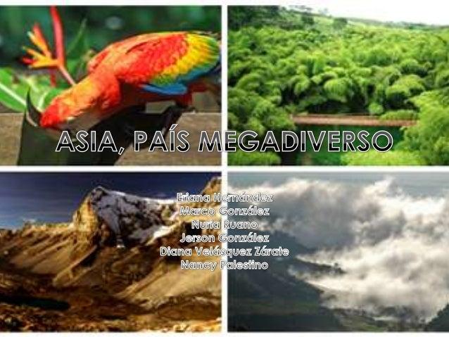 • Posición geográfica  • Diversidad de paisajes• Diversidad de flora y fauna       • Aislamiento         • Tamaño