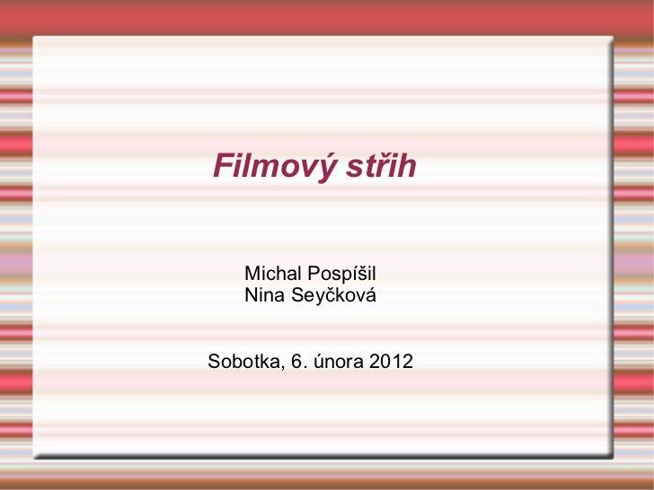 Filmový střih Michal Pospíšil Nina Seyčková Sobotka, 6. února 2012