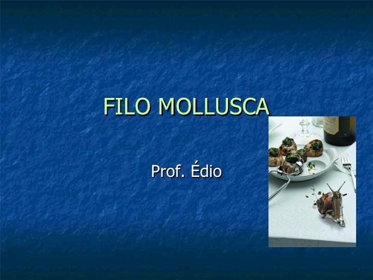 FILO MOLLUSCA Prof. Édio