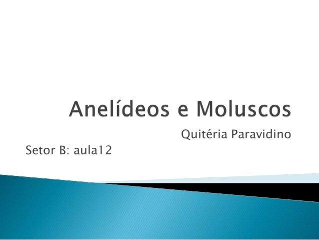 Quitéria Paravidino Setor B: aula12