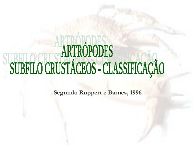 Segundo Ruppert e Barnes, 1996