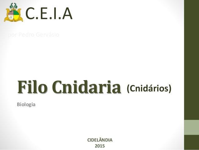 Filo Cnidaria Biologia CIDELÂNDIA 2015 (Cnidários) C.E.I.A por Pedro Gervásio