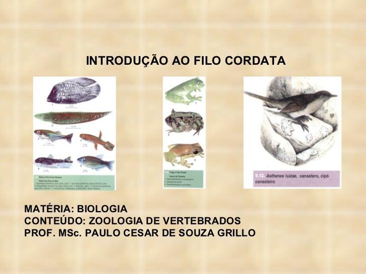 INTRODUÇÃO AO FILO CORDATA MATÉRIA: BIOLOGIA  CONTEÚDO: ZOOLOGIA DE VERTEBRADOS PROF. MSc. PAULO CESAR DE SOUZA GRILLO