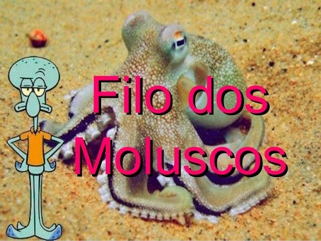 Filo dosFilo dos MoluscosMoluscos