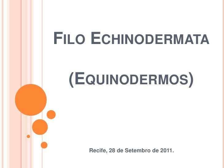Filo Echinodermata(Equinodermos)<br />Recife, 28 de Setembro de 2011.<br />