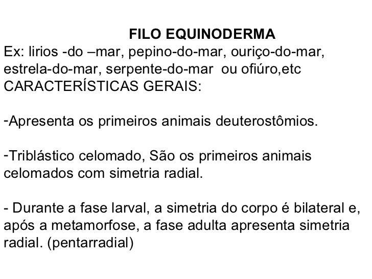 <ul><li>FILO EQUINODERMA </li></ul><ul><li>Ex: lirios -do –mar, pepino-do-mar, ouriço-do-mar, estrela-do-mar, serpente-do-...