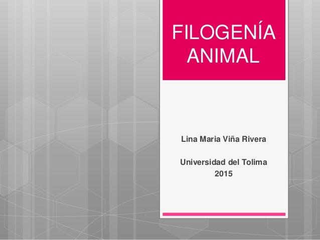 FILOGENÍA ANIMAL Lina Maria Viña Rivera Universidad del Tolima 2015