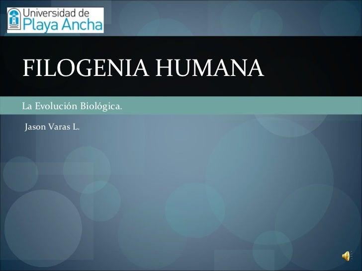 La Evolución Biológica. FILOGENIA HUMANA Jason Varas L.