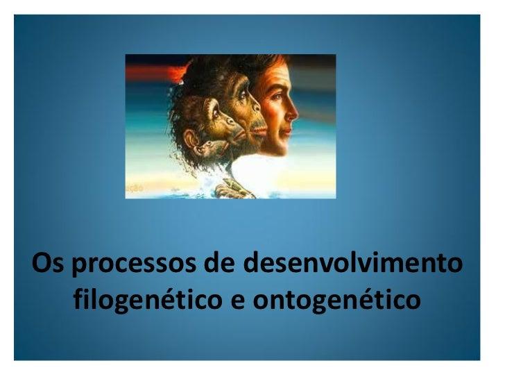 Os processos de desenvolvimento    filogenético e ontogenético