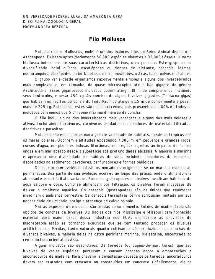 UNIVERSIDADE FEDERAL RURAL DA AMAZÔNIA-UFRADISCIPLINA: ZOOLOGIA GERALPROFª ANDRÉA BEZERRA                                 ...