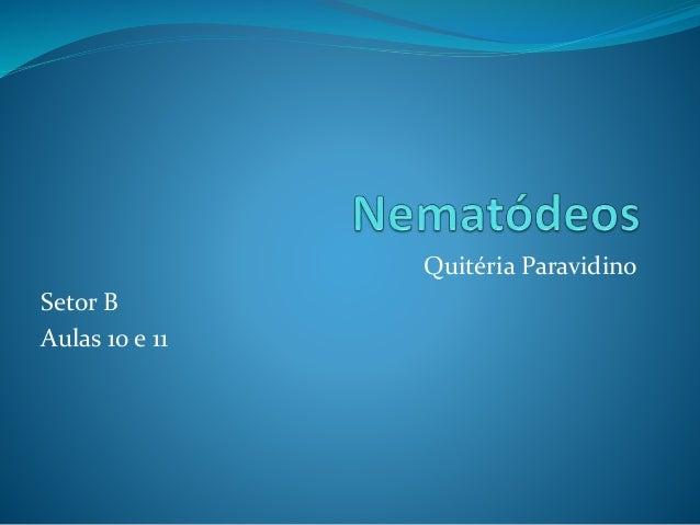 Quitéria Paravidino Setor B Aulas 10 e 11
