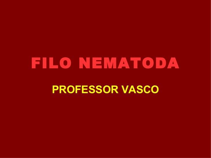 FILO NEMATODA PROFESSOR VASCO