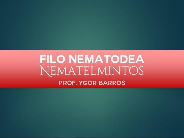 Filo Nematodea Nematelmintos Prof. Ygor Barros
